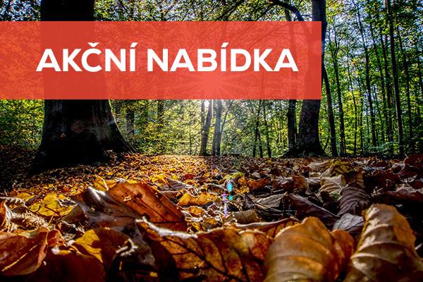 Harmonie Luhačovice Letní wellness pobyt